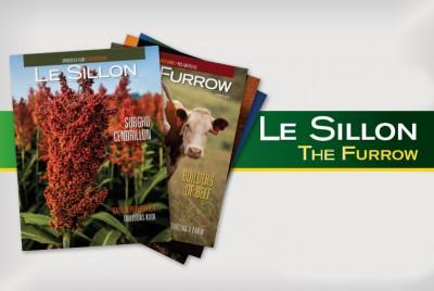 Le Sillon / The Furrow